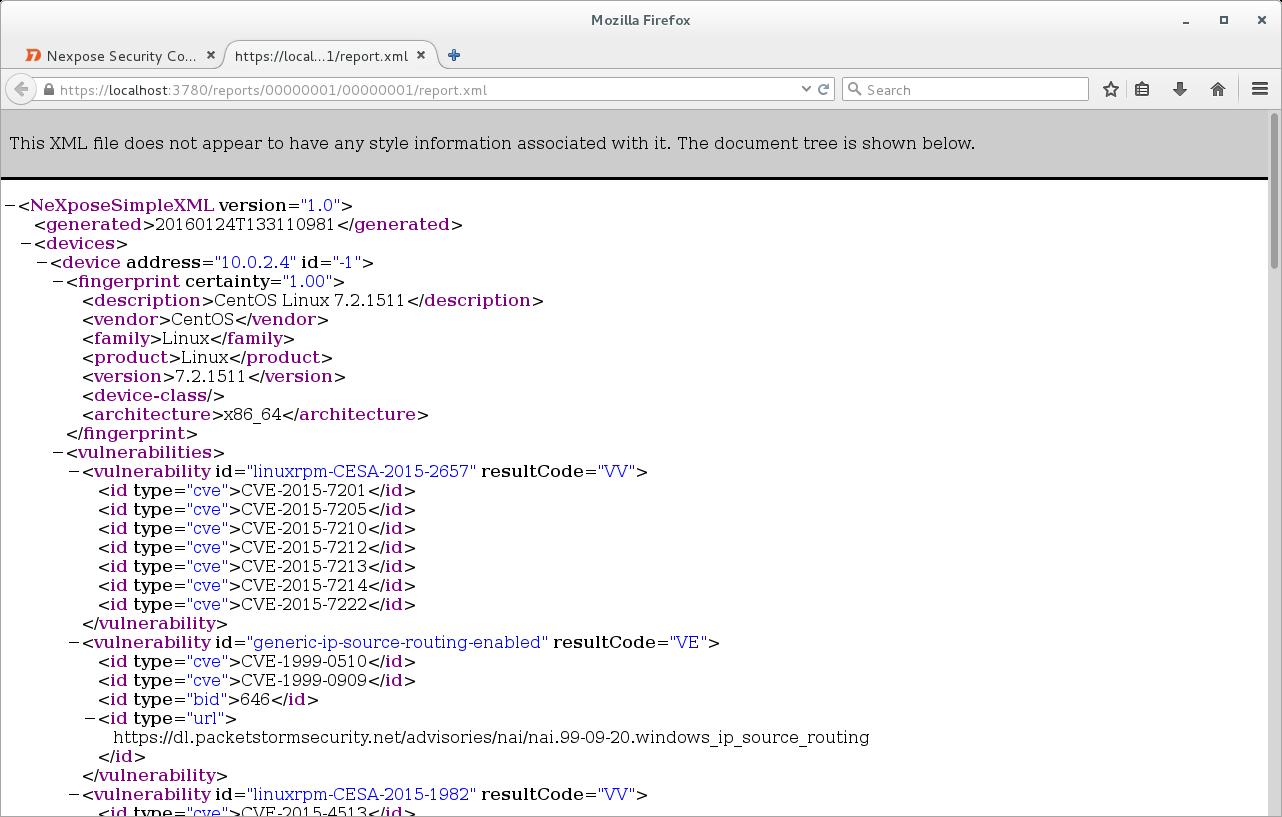Nexpose XML Report