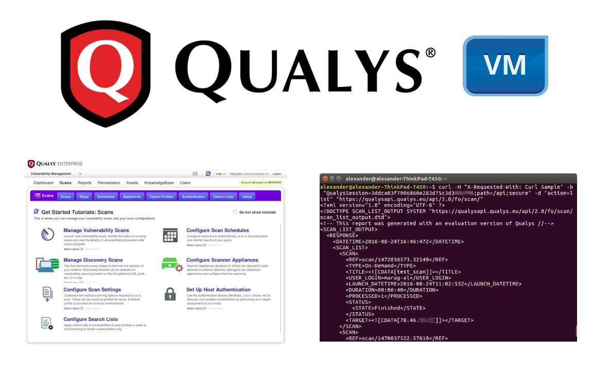 Qualys VM GUI and API