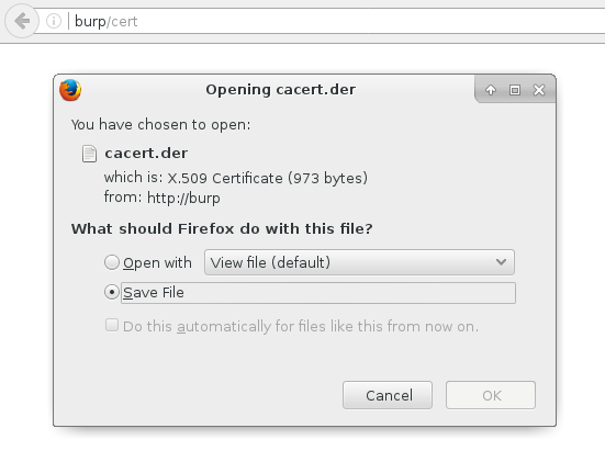 Burp Suite Free Edition and NTLM authentication in ASP net