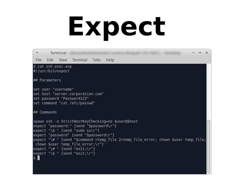 Expect SSH exec