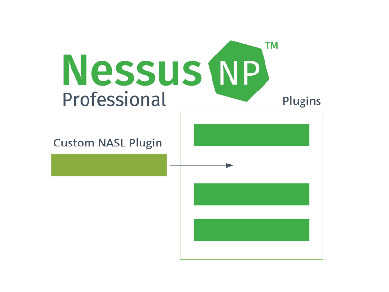 Adding custom NASL plugins to Tenable Nessus